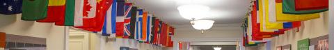 Flags at Darden